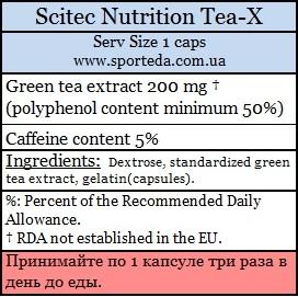 Экстракт зеленого чая Скайтек Нутришн